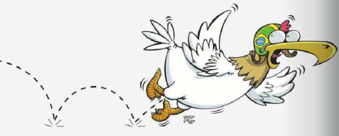 voo de galinha na economia brasileira